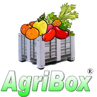 220 - AGRI-BOX BINs FORATI CONTENITORI VENTILATI CASSE PERFORATE BOX GRIGLIATI