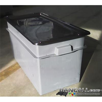 ExportBox100L - BOX CASSA per l'Export  da 100 Litri  cm 40x80 h.41 con COPERCHIO. Cassa di  Plastica Lunga e Stretta.  Kg. 4,4